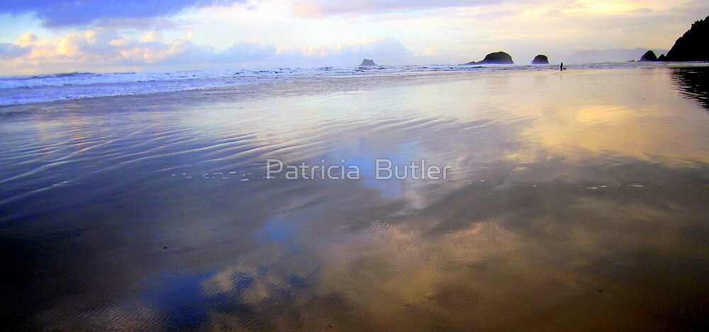... a dream within a dream ... by Patricia  Butler