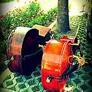 Double Bass Couple by Andrea Gerak