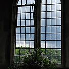 church windows by purpleminx