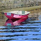 The old red boat by Freda Surgenor