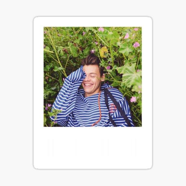 Harry Style Polaroid Sticker Sticker