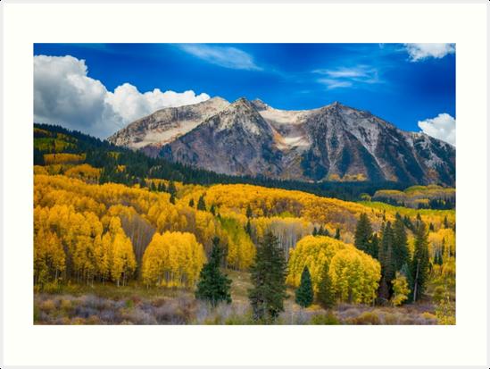 Colorado Rocky Mountain Autumn Season Beauty by Bo Insogna