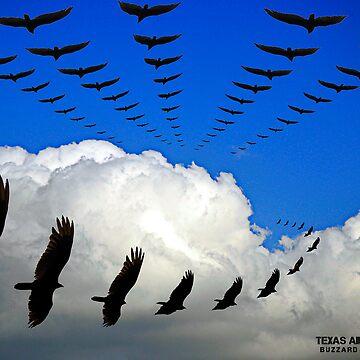 Texas Air Patrol, buzzard division by SnuffyJackson