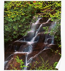 WOODFIN CASCADE Poster
