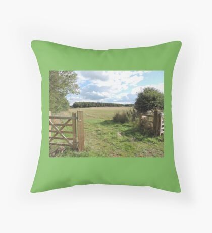 Walk With Love & Reverence  Throw Pillow