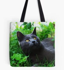 The ornithologist ? Tote Bag