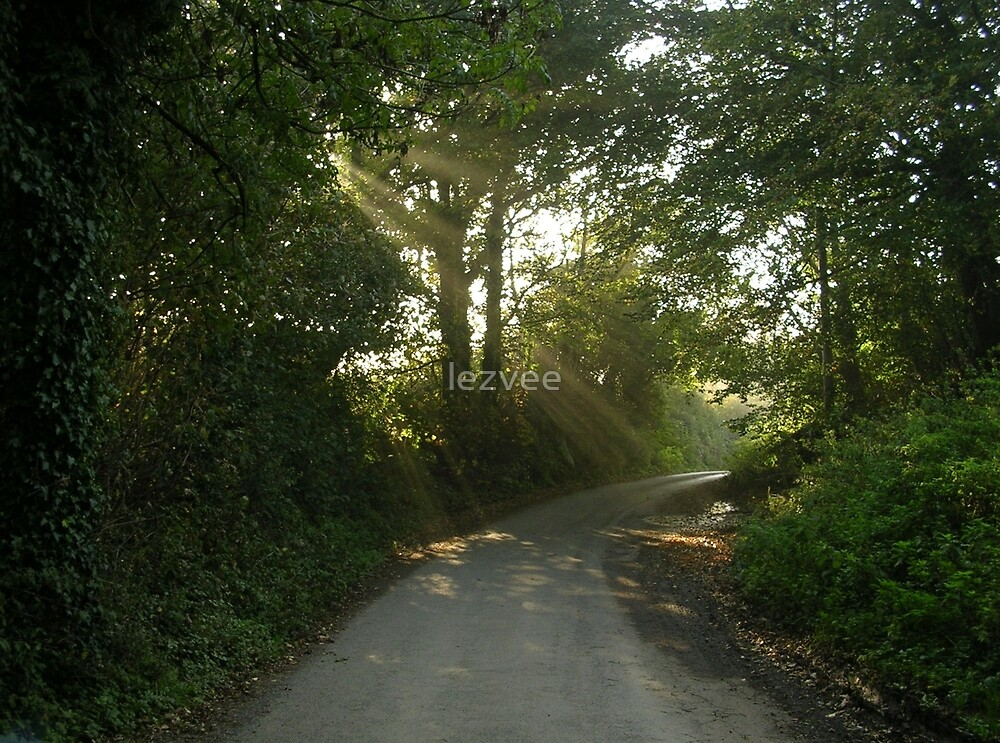 Autumn Morning in a Devon Country Road by lezvee