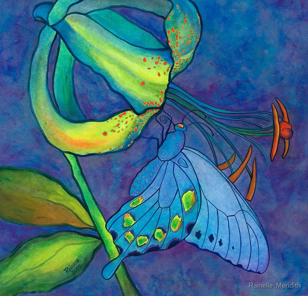 """Wood Lily and Swallowtail"" - Wild Lily in the Appalachians by Rainelle  Meridith"
