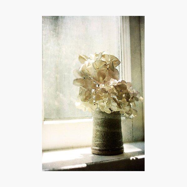 lucidity Photographic Print