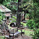The Gatekeepers Cottage - Wynstay - Mt Wilson NSW Australia by Bev Woodman