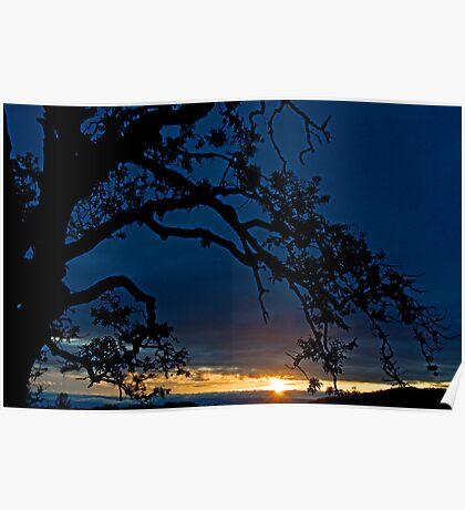 Ankeny Hill Sunset Poster