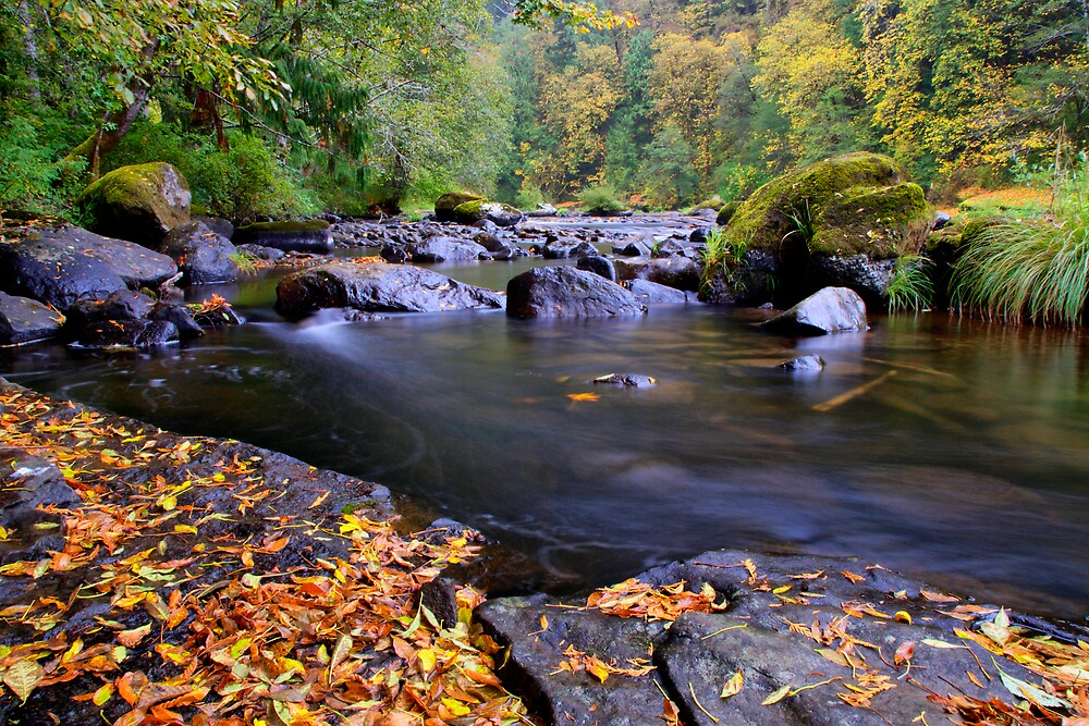 Lake Creek Fall by Charles & Patricia   Harkins ~ Picture Oregon