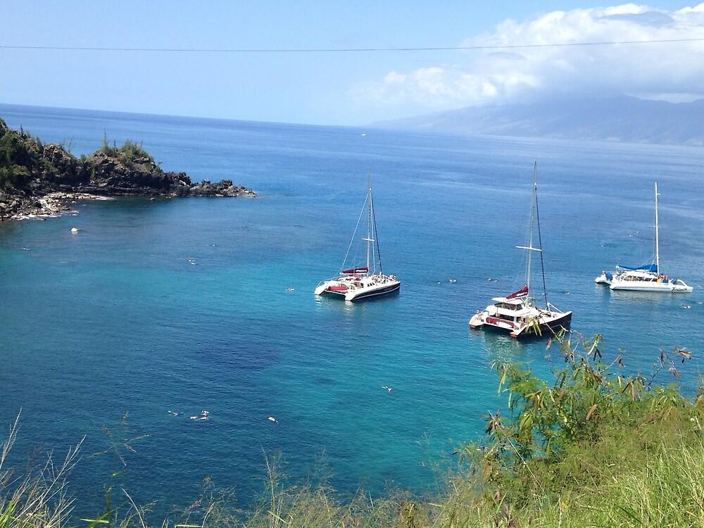 Maui Shore by Jesse Nilges