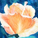Summer Rose by Gemma Art