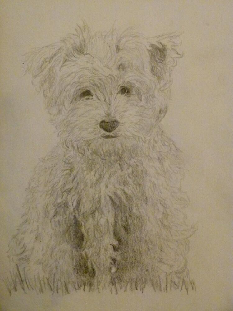 Dog by marta8494