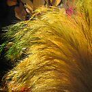 Yellow grass by Shiju Sugunan