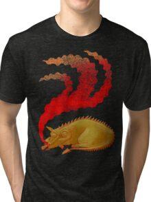 Snoring Dragon Tri-blend T-Shirt