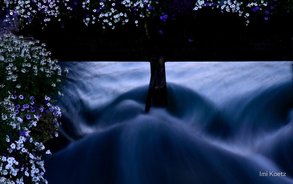 The Flower Bridge........Annecy.........France by Imi Koetz
