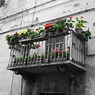 Italian Flower Balcony by redph