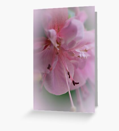 Fluffy Pink Clouds Greeting Card