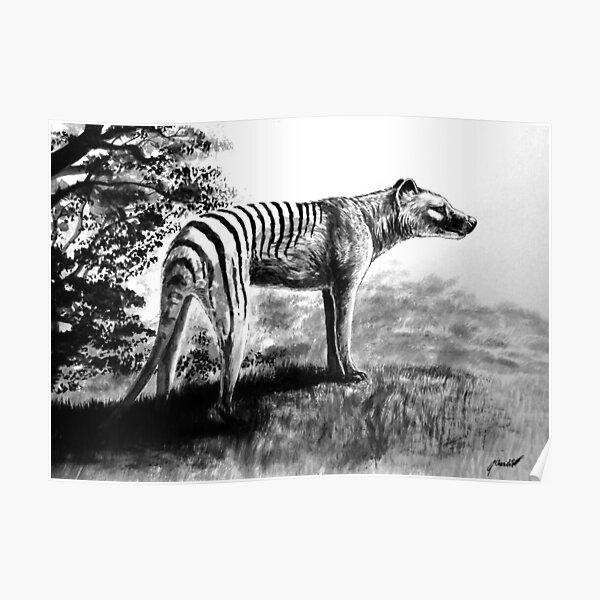 Thylacine Poster