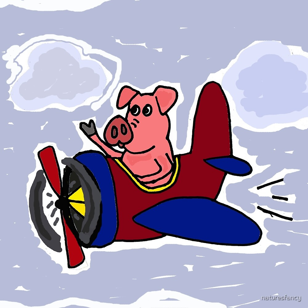 Funny Pig Flying in Red and Blue Airplane by naturesfancy