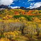 Colorful Kebler Pass Fall Foliage by Bo Insogna