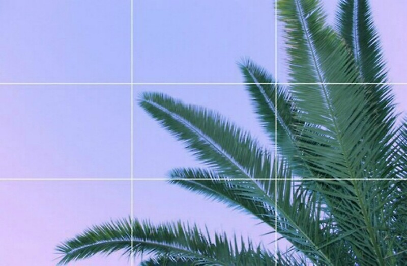 Palm Trees Ombre Sky Grid Aesthetic Laptop Skins By