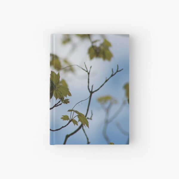in Bloom Hardcover Journal
