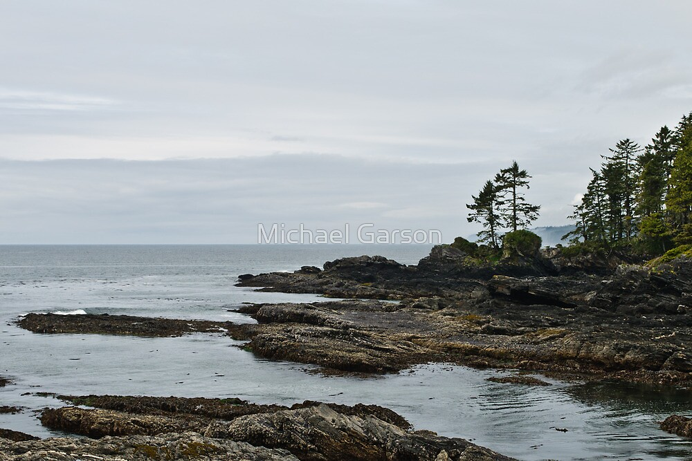 Just another Beautiful Grey day at Botanical Beach by Michael Garson