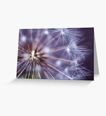 Dandelion Macro Greeting Card