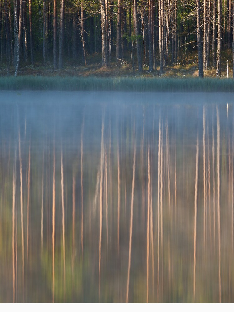 Forest reflecting to small lake at morning by Juhku