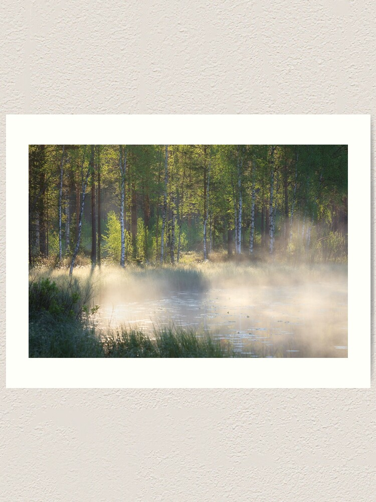 Alternate view of Small forest pond at sunrise Art Print
