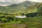 Blea Tarn from Lingmoor by Jamie  Green