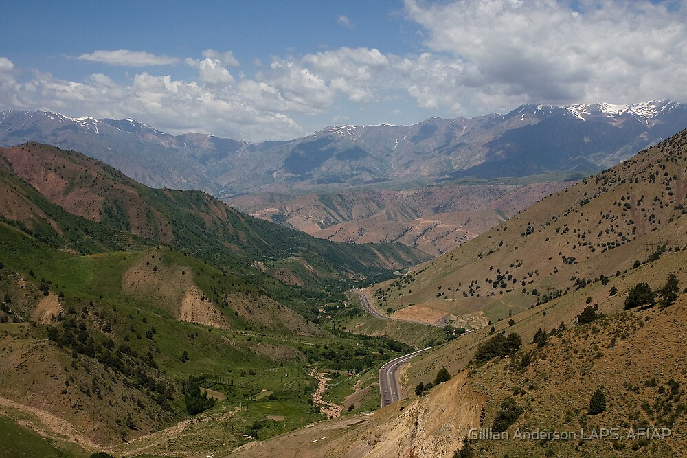 Road to Fergana Valley by Gillian Anderson LAPS, AFIAP