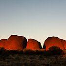 Sundown at The Olgas by Lisa Kenny