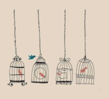birdcage- searching for the one by miiaa