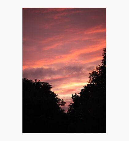 Pink Skyline Photographic Print