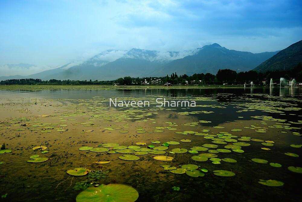 Dal Lake Srinagar by Naveen  Sharma