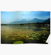Dal Lake Srinagar Poster