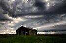 Irricana Storm Shack by EchoNorth
