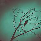Black Bird Blue by BobbiFox