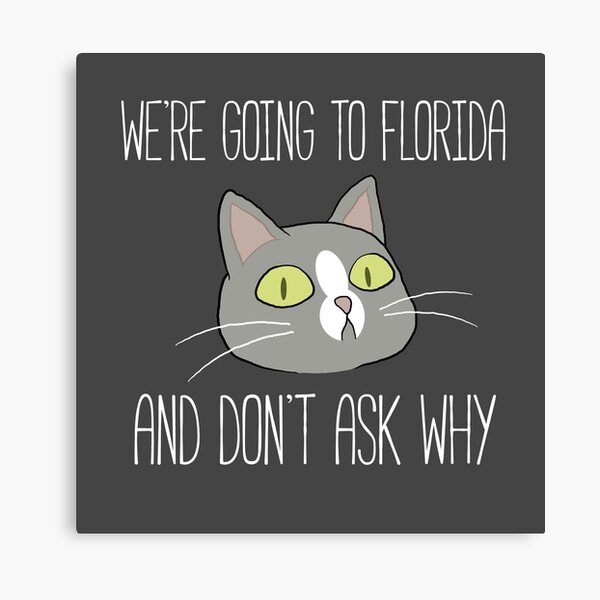 Talking Cat Canvas Print