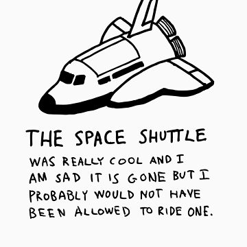 Space Shuttle by jaybill