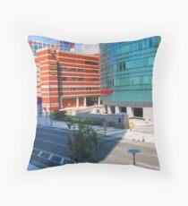 The Children's Hospital of Philadelphia and Seashore House Throw Pillow