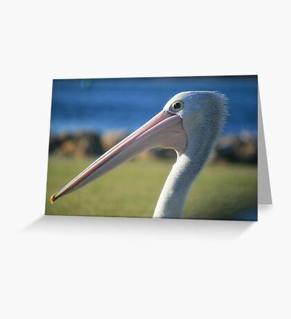 Elder Statesman, Pelican at Greenwell Point Greeting Card