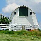 Olde Dairy Barn by Susan Blevins