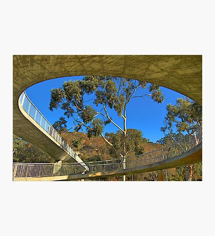 Circular Bridge Photographic Print