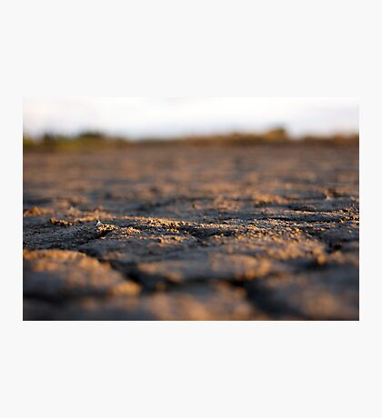 Parched land Photographic Print