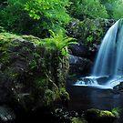 Waterfall On The Campsie Fells Scotland by Jim Wilson
